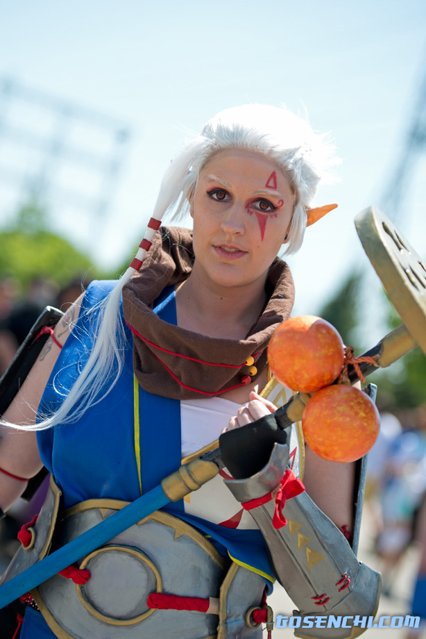 Impa from Hyrule Warriors